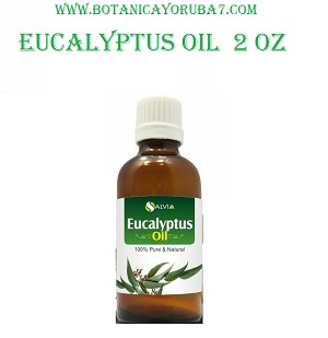 Eucalyptus Oil ( 2 0z for external use only )