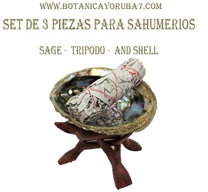 Sage Cleansing Set, include sage and Generic Abalone Shell with Tripod Stand