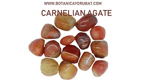 CARNELIAN AGATE EACH ONE